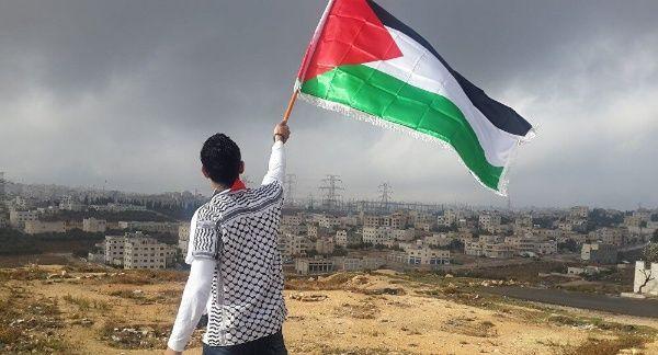 Cómo ha contribuido la OLP a la causa palestina?