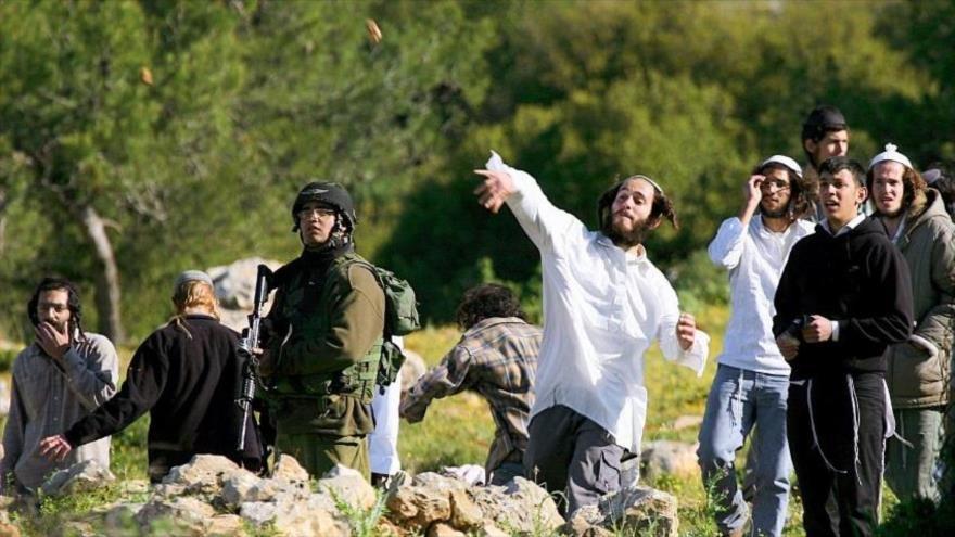 ONU ha advertido sobre el aumento significativo de crímenes perpetrados por colonos contra los palestinos